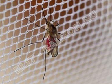 setki mozkitnye na okna pvh 5 387x291 - Москитные сетки