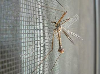 setki moskitnye raspashnye na dveri pvh 5 1 387x291 - Распашные сетки на двери