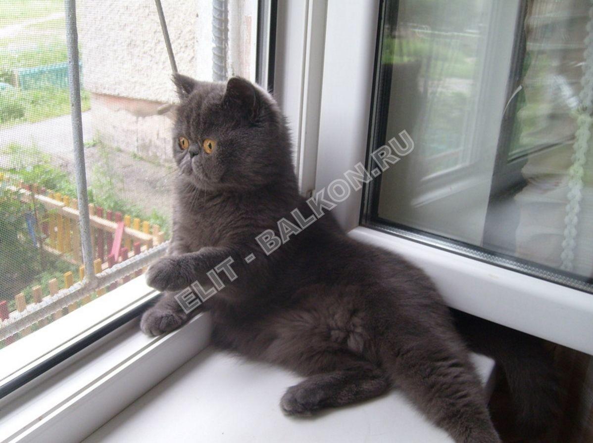 setki mozkitnye antikoshka na okna pvh 28 - Москитная сетка на окно – важная деталь в каждом доме