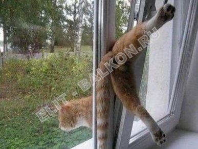 setki mozkitnye antikoshka na okna pvh 25 387x291 - Москитные сетки антикошка на пластиковые окна для балконов и лоджий