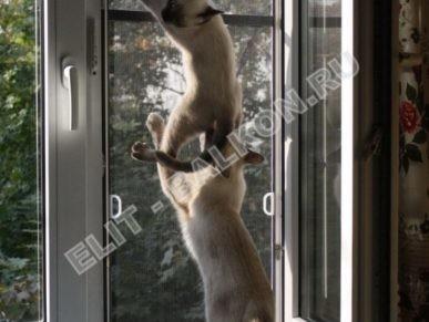 setki mozkitnye antikoshka na okna pvh 29 387x291 - Москитные сетки антикошка на пластиковые окна для балконов и лоджий