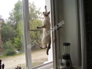 setki mozkitnye antikoshka na okna pvh 35 387x291 - Москитные сетки антикошка на пластиковые окна для балконов и лоджий