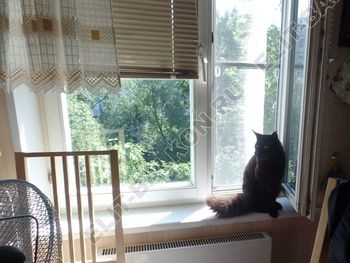 Setka antikoshka 3 387x291 - Москитные сетки антикошка на пластиковые окна для балконов и лоджий