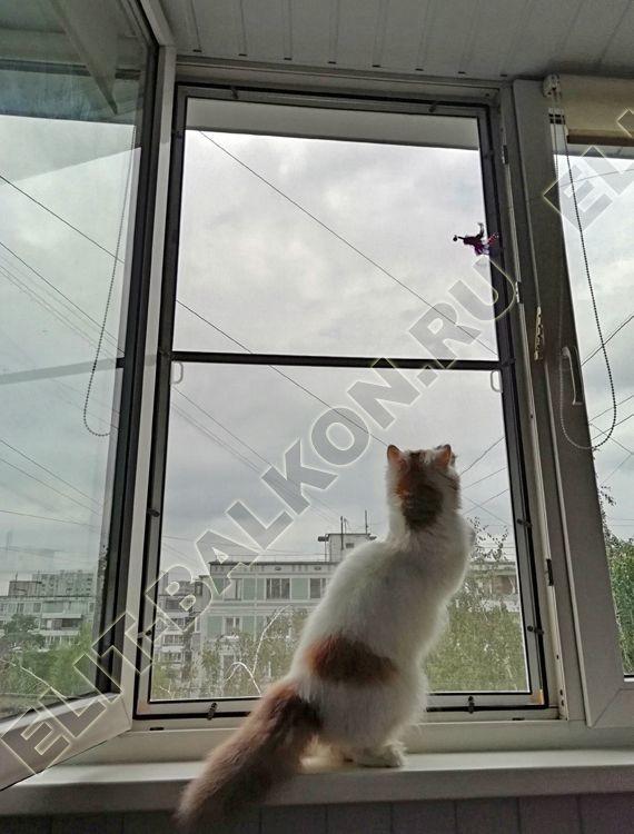 setka antikoshka ustanovlena 7 - Москитные сетки антикошка на пластиковые окна для балконов и лоджий