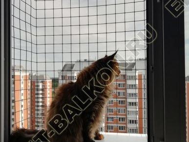 vygul dlja koshki za okno v kvartire 2 387x291 - Фото выгул для кошки за окно, объект № 1