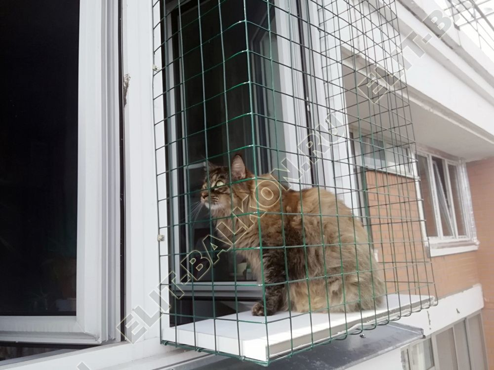 Балкон для кошки. Выгул за окно