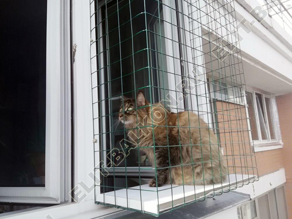 vygul dlja koshki za okno v kvartire 3 - Окна и комплектующие