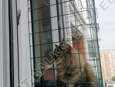 vygul dlja koshki za okno v kvartire 6 387x291 - Фото выгул для кошки за окно, объект № 1