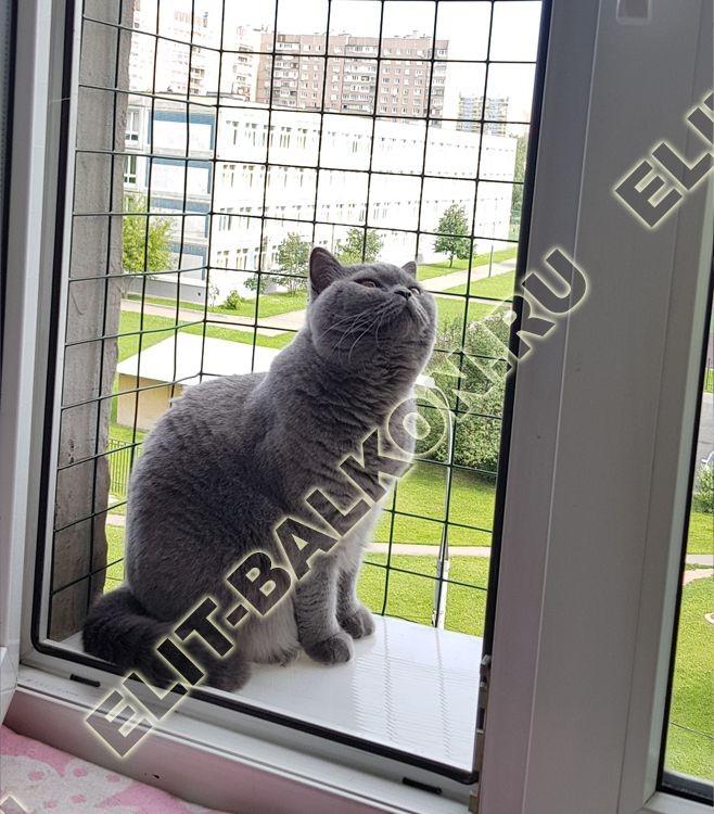 vygul dlja koshki za okno v kvartire 9 - Решетка для кошек. Выгул за окно